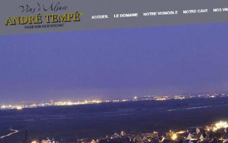 https://www.vins-andre-tempe.com
